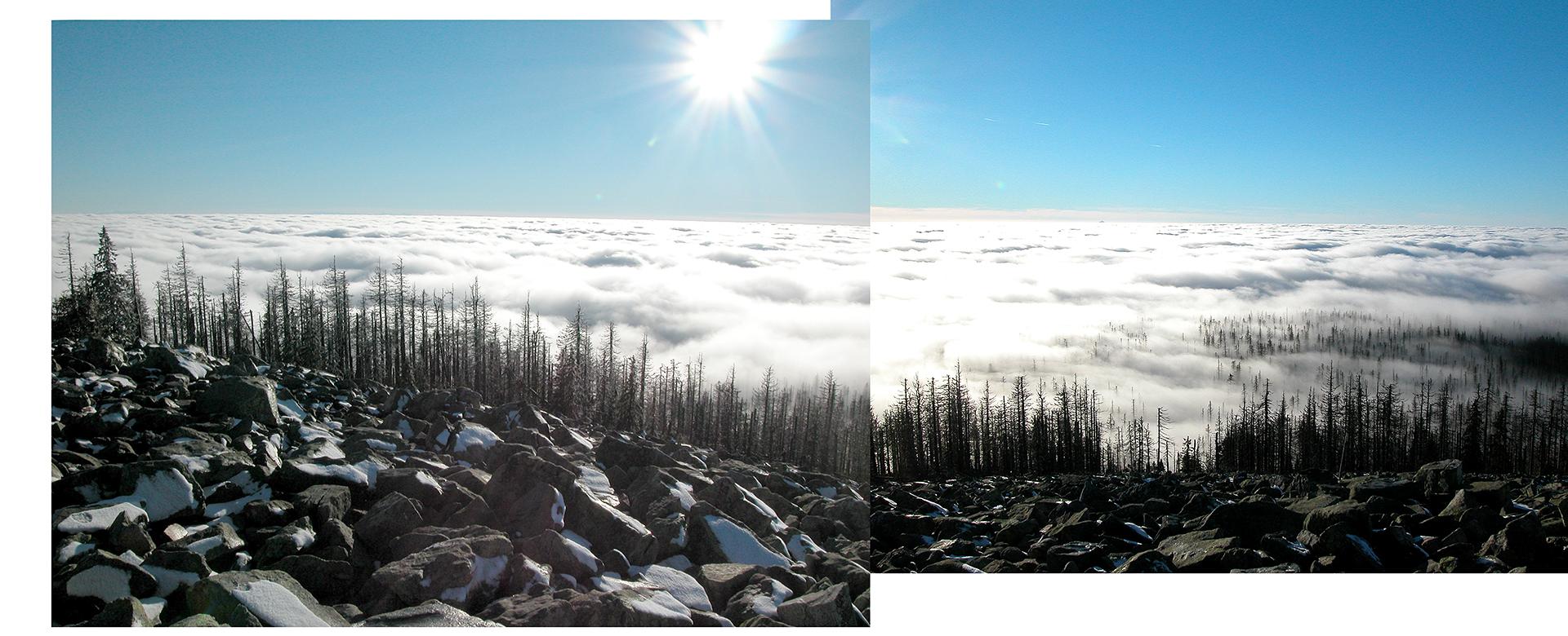 Lusen-Nebel-Gi-coll